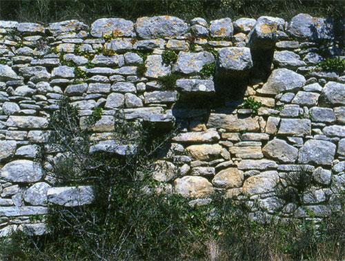 pierre12-373.jpg