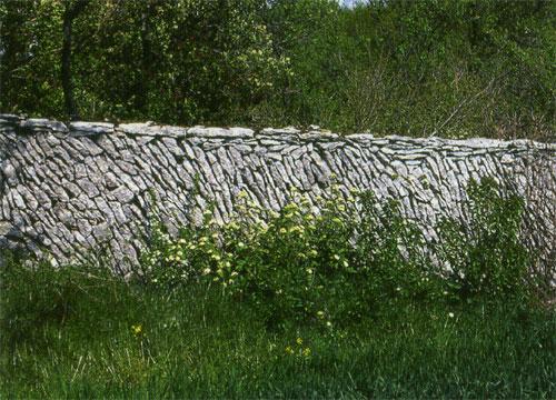 pierre13-373.jpg