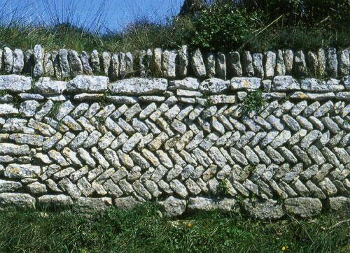 pierre14-373.jpg