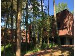 Une symbiose brique et bois pour un institut médical pour enfants