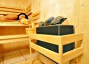 Poêle à sauna 3kw océanic