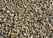 Les granulats marins