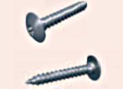 Plurfix vis métaux empreinte Torx 30