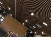 Plafond Lauder LINEA