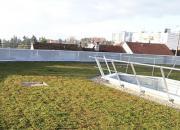 La végétalisation des toitures terrasses