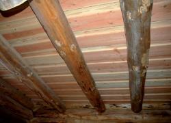 Poutres bois composites : des solutions performantes