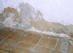 Peintures et finitions : contrôlez l'humidité des subjectiles