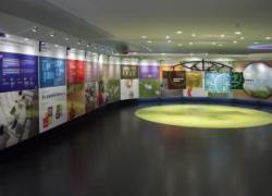 Revêtements de sols : Tarkett ouvre un show room de 4000 m2