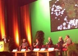 Murs et toits végétalisés font leur show à Nantes