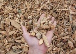 Un baromètre sur le prix du bois énergie