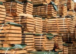 La filière bois est mal pilotée en France selon le Sénat