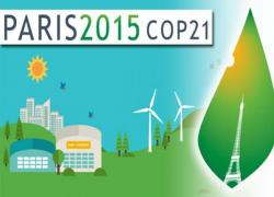 COP21(2/3): Quelles vertus pour le bois?