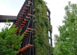 Paris veut 100 hectares de végétation en plus d'ici 2020