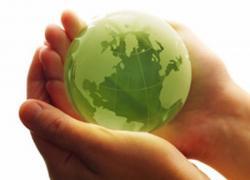 Réhabilitation et produits biosourcés: un label au bois dormant?