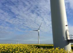 Les coûts du solaire et de l'éolien vont encore baisser fortement