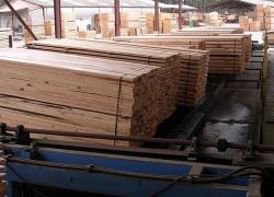 La récolte de bois commercialisée recule de 1% en 2015