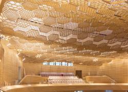 Un agencement artistique de bois acoustique à La Seine Musicale
