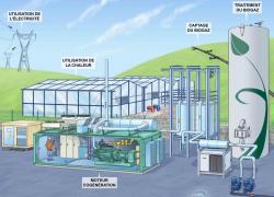 GRDF vise un verdissement complet des réseaux gaz