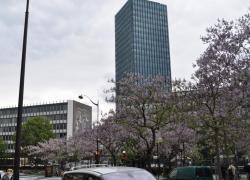 Report de l'affaire de l'amiante à Jussieu et Normed
