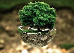 La qualité environnementale des grands projets se dégrade