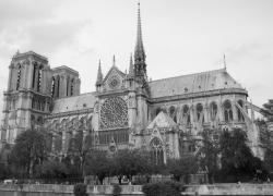 Restauration de Notre-Dame: les Français