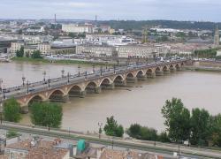 Bordeaux va planter 20.000 arbres pour lutter contre les îlots de chaleur