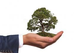 Emploi, écologie : Philippe met en lumière les