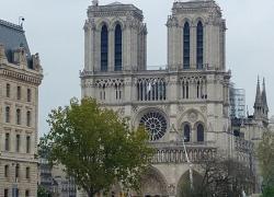 Reprise progressive du chantier de Notre-Dame de Paris