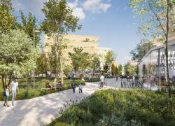 Village Olympique : le bois ne se taillera pas la part du lion