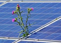 Des panneaux solaires, oui, mais pas à la place des champs !