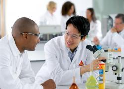 Colles : la technologie polyuréthane au cœur de la stratégie de Sika
