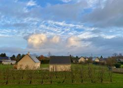 Loi biodiversité et Zéro artificialisation : le logement neuf devra s'adapter