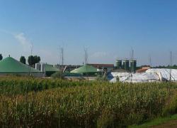 Hydrogène et biogaz: la filière gaz fait valoir ses innovations