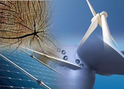 Deux ordonnances clarifient les règles d'exploitation des énergies renouvelables