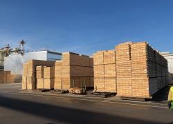 Tensions sur les prix du bois d'oeuvre et des panneaux : les raisons de la crise