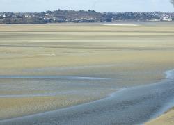 Lancement en mai des travaux du parc éolien de la baie de Saint-Brieuc