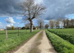 Loi Climat et résilience : le sénat consulte les élus locaux
