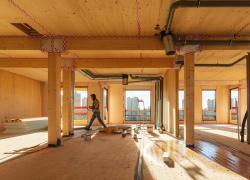 « Le meilleur est à venir » pour Woodeum, promoteur leader de la construction bois