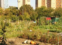 JO-2024: évacuation des occupants des jardins ouvriers d'Aubervilliers