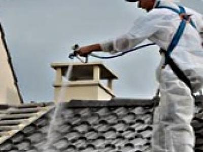 etanch it des toitures et traitement anti mousse 44358p1. Black Bedroom Furniture Sets. Home Design Ideas