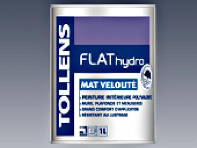 Flat Hydro Mat Vernis Enduits Et Revêtements Peintures 20656p1