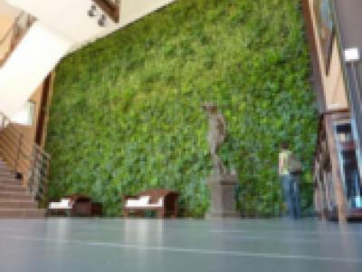 Murs végétalisés intérieurs