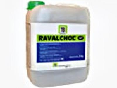 ravalchoc produits de ragr age produits de pr paration 39992p1. Black Bedroom Furniture Sets. Home Design Ideas