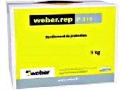 weber.rep P 310