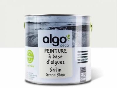 Peinture Intérieure Algo Paint