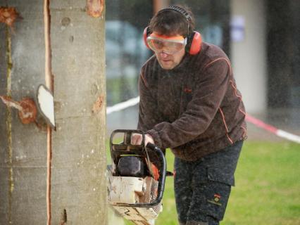 De la construction à la sculpture bois… grâce à la tronçonneuse