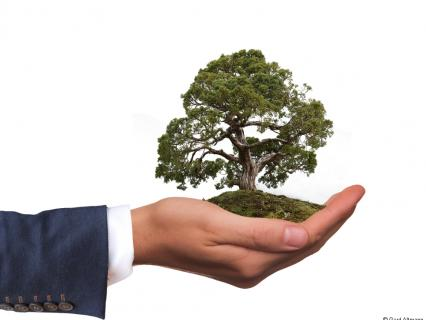 """Emploi, écologie : Philippe met en lumière les """"solutions"""" des territoires"""