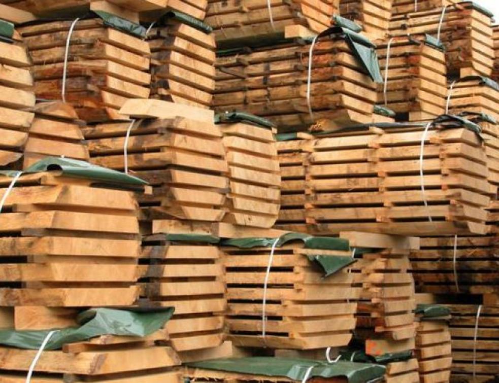 Un manifeste pour sauver la filière forêt bois française