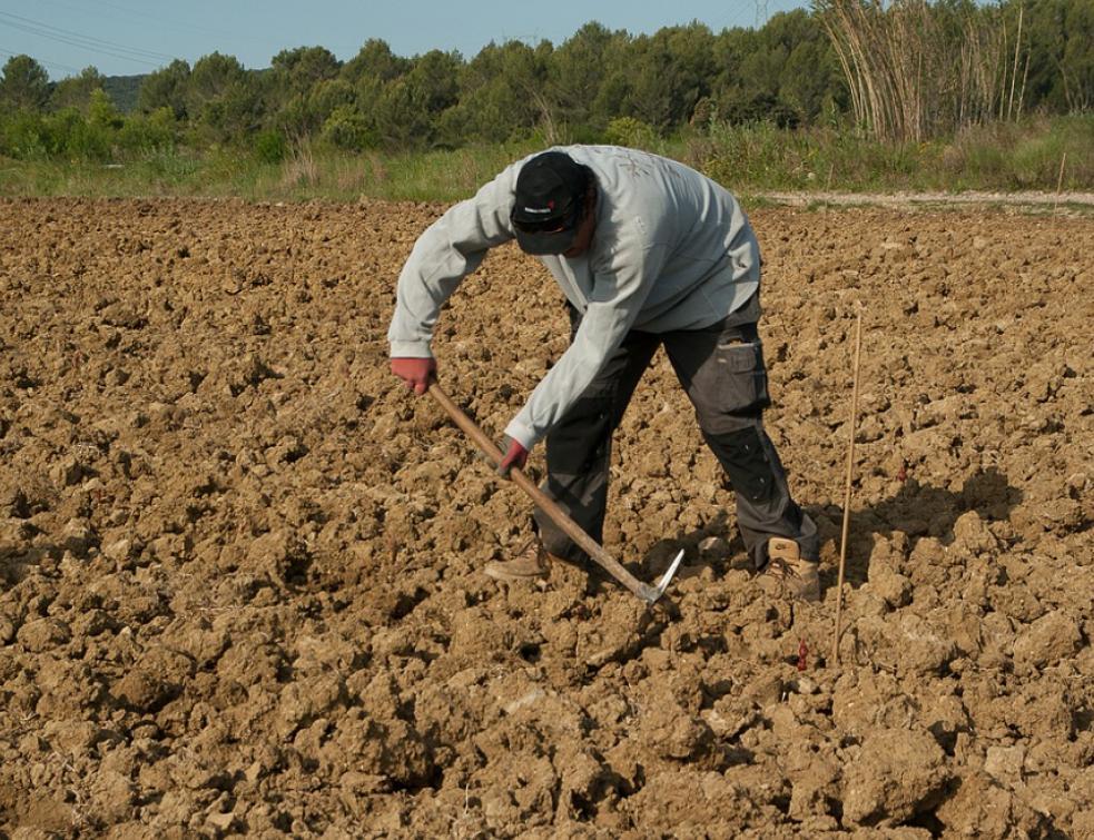 L'agriculteur à la retraite doit vendre ou louer ses terres
