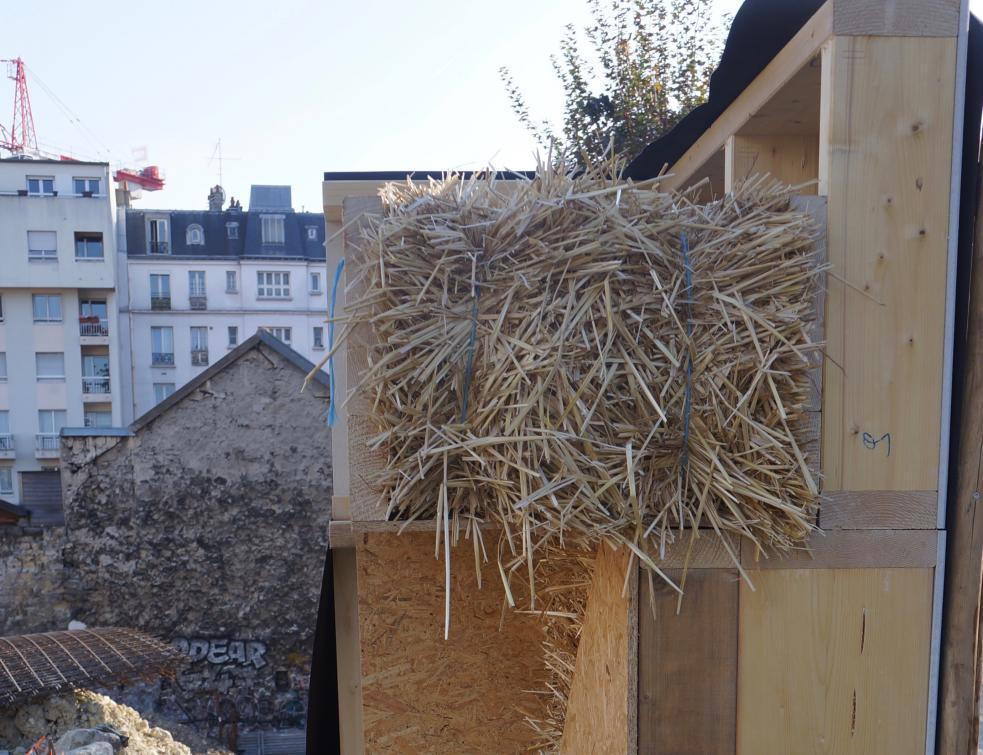 Le bois face au défi bio-sourcé